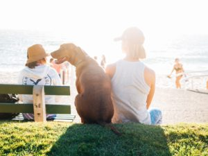 Why Every College Grad Should Get a Dog After Finishing School